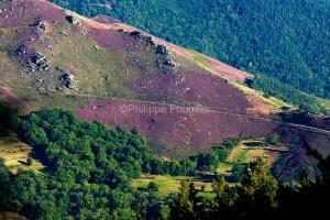IMG_17085385_Ardèche (07)  laval d'aurelle parc naturel région