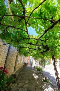 IMG_1906241332_Lozère (48)  Sainte Enimie Gorges du Tarn une vi
