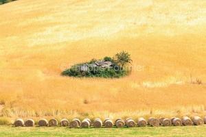 IMG_1907201227_Lozère (48)  Saint Amans Margeride Paysage agric