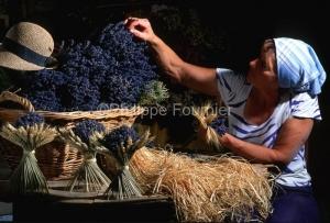 IMG_262450_DROME FERRASSIERES CHATEAU DE LA GABELLE MARGUERITE B