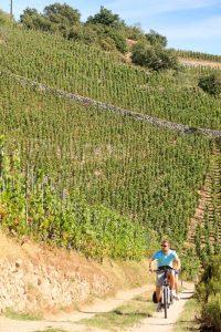 IMG_15084235_Cepage  Couple  Cyclotourisme  Paysage  Tain-l'Herm