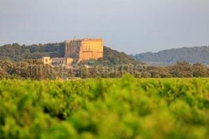 IMG_18071011_drome (26)  suze la rousse drôme provençale le vi