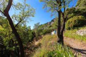 IMG_1907061987_Vaucluse (84)  Brantes Villages perchés, du ling