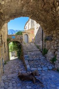 IMG_1907092646_Vaucluse (84)  Brantes Villages perchés, l'ombre