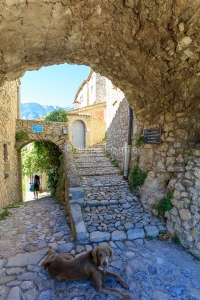 IMG_1907092653_Vaucluse (84)  Brantes Villages perchés, l'ombre