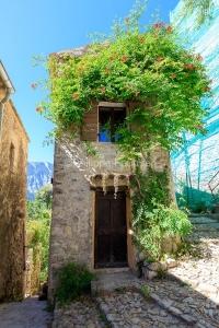 IMG_1907092655_Vaucluse (84)  Brantes Villages perchés, habitat