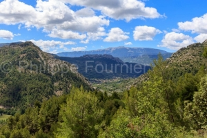IMG_16076354_drome (26)  buis les baronnies paysage drôme prove