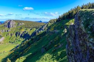 IMG_16064772_Ardèche (07)  boree parc naturel régional des mon
