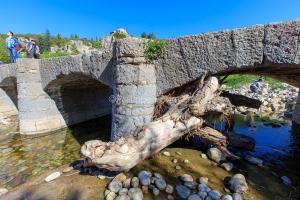 IMG_16051870_Ardèche (07)  labeaume village de caractère pont