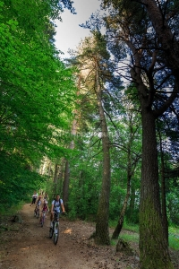 IMG_15070881_Famille- Foret- Lac-d'Issarles- VTT Sport-Loisirs I