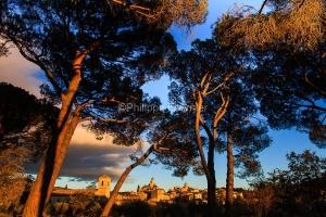 IMG_1112101_lourmarin_vue_sous_les_pins_parc_naturel_regional_de