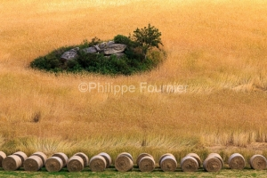 IMG_1907201255_Lozère (48)  Saint Amans Margeride Paysage agric