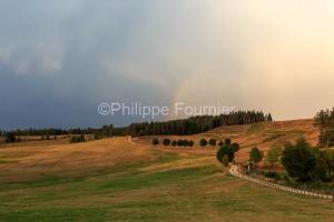IMG_1907305155_Lozère (48)  Lachamp paysage Margeride, chemin c