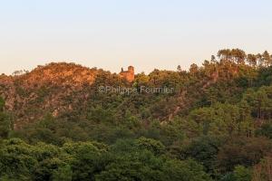 IMG_1907315442_Gard (30)  Peyremale, Parc National des Cévennes
