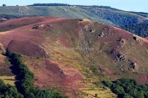 IMG_17085384_Ardèche (07)  laval d'aurelle parc naturel région