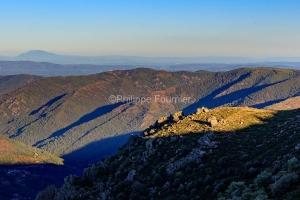 IMG_17085408_Ardèche (07)  montselgues parc naturel régional d