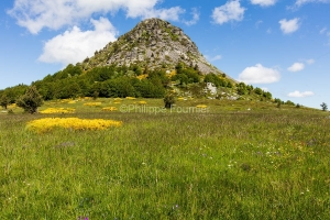 IMG_16064717_Genet- Mont-Gerbier-de-Jonc- Prairie paysage Sainte