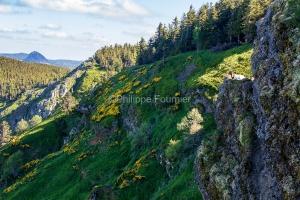 IMG_16064784_Ardèche (07)  boree parc naturel régional des mon