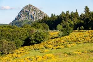 IMG_16064808_Genet- Mont-Gerbier-de-Jonc paysage Sainte-Eulalie