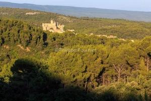 IMG_1907072325_Vaucluse (84)  Le Barroux Pays des Dentelles de M