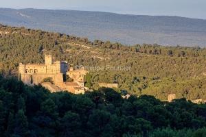 IMG_1907072442_Vaucluse (84)  Le Barroux Pays des Dentelles de M