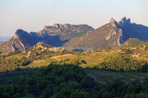 IMG_1909131448_Vaucluse (84)  Suzette  vue du village, le vignob
