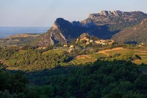 IMG_1909131455_Vaucluse (84)  Suzette  vue du village, le vignob