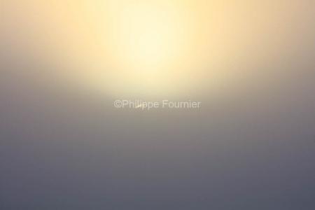 IMG_19040460_Ardeche (07)  saint remèze réserve naturelle des