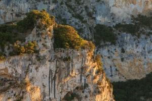IMG_16064920_Ardèche (07)  Vallon Pont d'Arc Réserve Naturelle