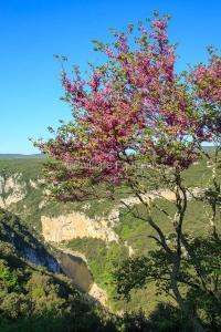 IMG_13057212_Ardeche (07)  Saint Remeze Reserve Naturelle des Go