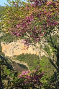 IMG_13057225_Ardeche (07)  Saint Remeze Reserve Naturelle des Go