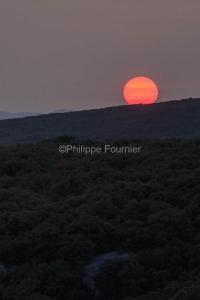 IMG_17097215_Ardèche (07)  saint remèze réserve naturelle des