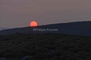 IMG_17097216_Ardèche (07)  saint remèze réserve naturelle des