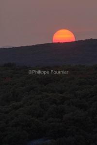 IMG_17097225_Ardèche (07)  saint remèze réserve naturelle des