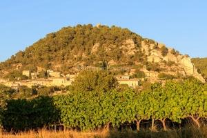 IMG_1909121390_Vaucluse (84)  Séguret Plus beaux villages de Fr