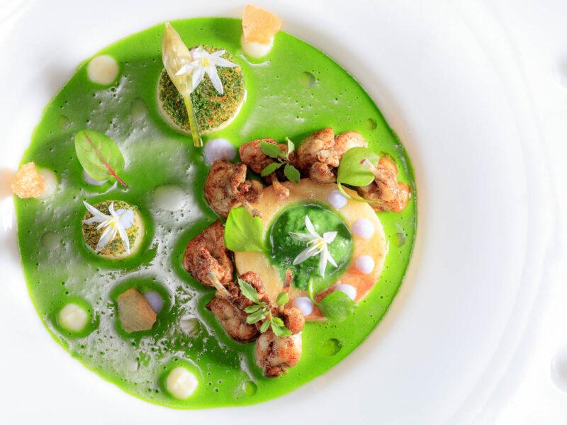 IMG_16064153_Cuisse-de-Grenouille- Recette Hotel Helvie Vivarais Gastronomie Vals-les-Bains Ardeche