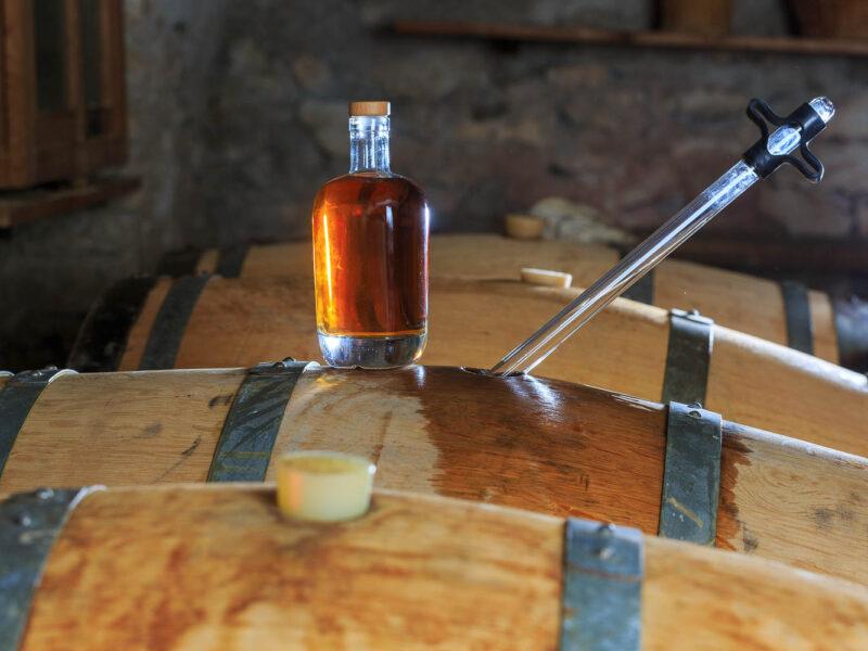 IMG_1906101187_Ardèche (07) Saint Martin d'Ardèche Soutirage Chais de vieillissement, le whisky du Tanargue._