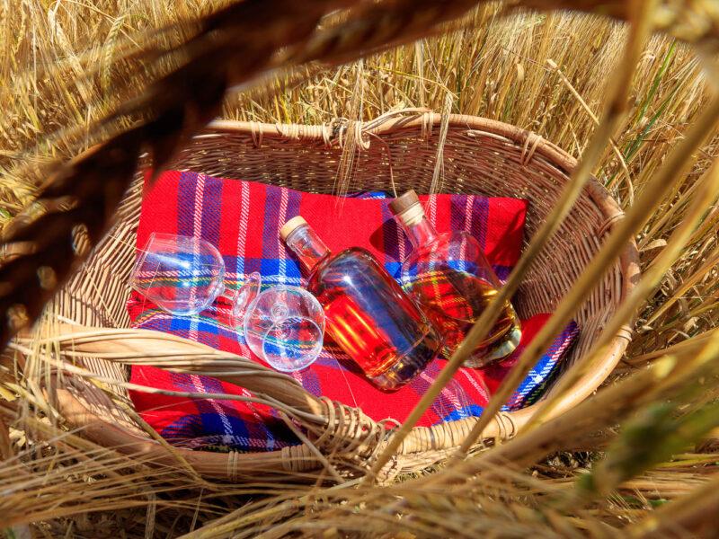 IMG_1906101193_Ardèche (07) Saint Martin d'Ardèche Bouteille, dans un champ d'Orge, le whisky du Tanargue._