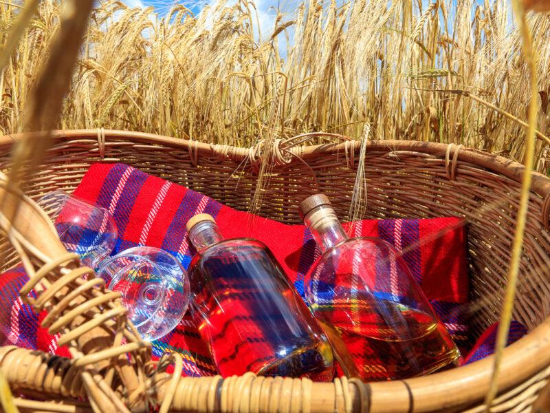 IMG_1906101194_Ardèche (07) Saint Martin d'Ardèche Bouteille, dans un champ d'Orge, le whisky du Tanargue._